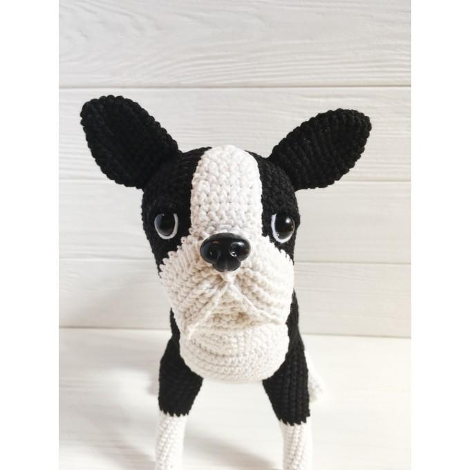 Crochet boston terrier